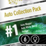 Auto Collection Pack #1 6 kom PAR