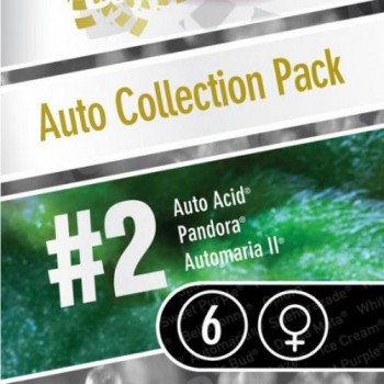 Auto Collection Pack #2 6 kom PAR