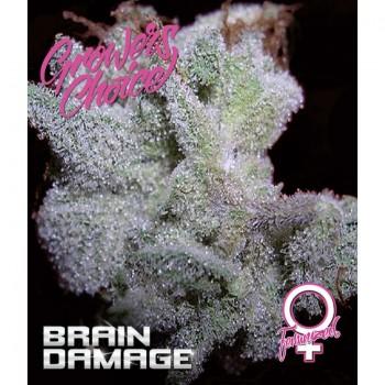 Brain damage fem. 5 kom. G.C.