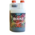 Canna Boost 1 L