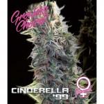 Cinderella 99 fem 3 kom. G.C.